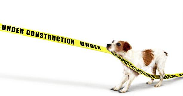 under_construction_dog_1-764x322